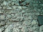 02 zid mircea 0275a