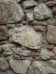 04 zid mircea 0284a