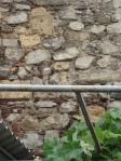 05 zid mircea 0280a