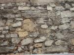 07 zid mircea 0283a