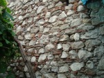 08 zid mircea 0276a