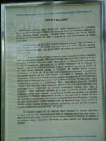 zamfira istoric 8053