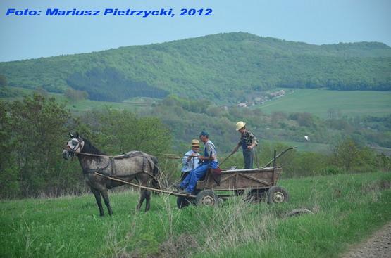 pl 2012 DSC_0083